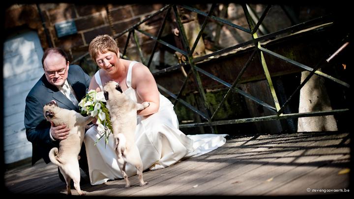 wedding photography Nancy & Filip